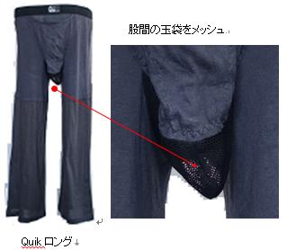 ブログ画像=Quikロング+拡大=212.png